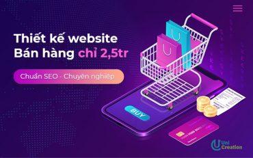 Thiết kế website bán hàng chuyên nghiệp chỉ 2.5tr